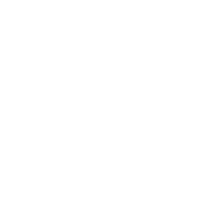 Pilates4Life Logo
