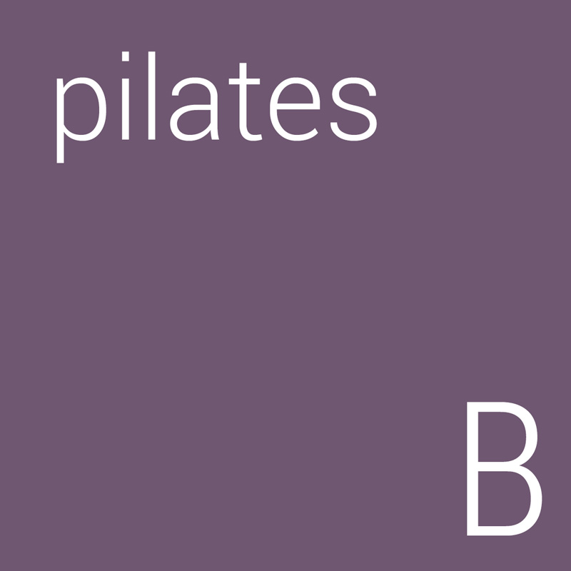 Pilates Beginner's Course